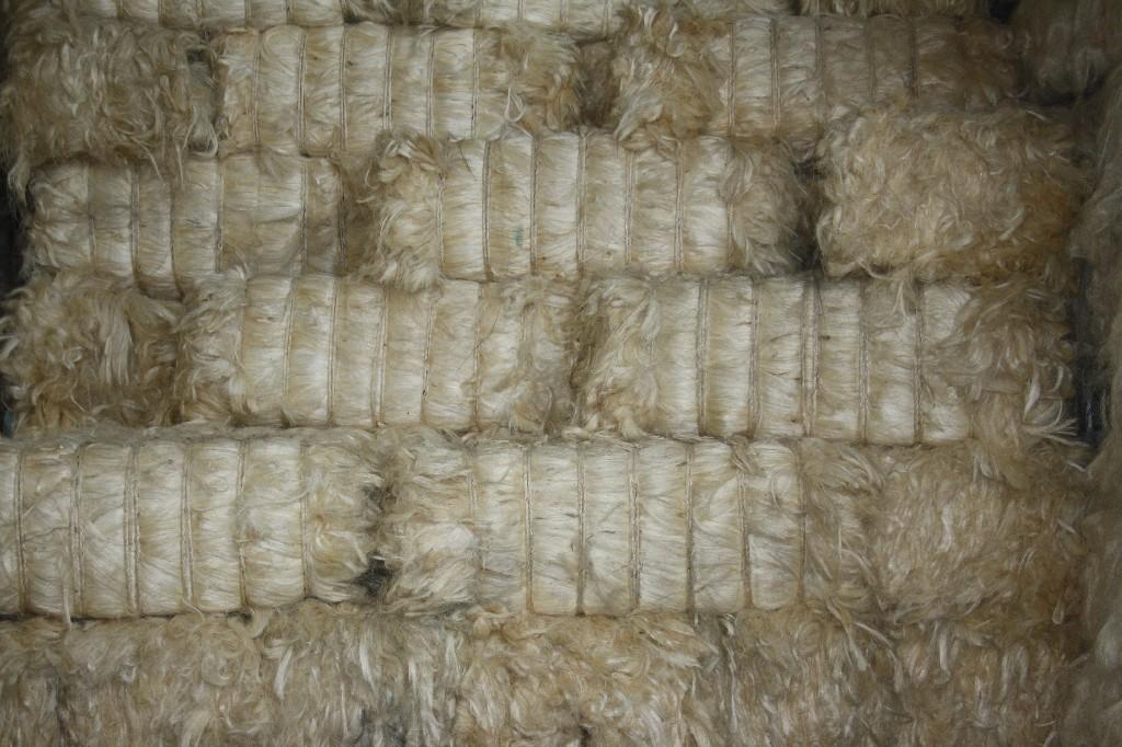 espartos y sisal mezcla de fibras vegetales de origen espaol y africano destinada a la colocacin de placas de escayolas el esparto es una fibra vegetal